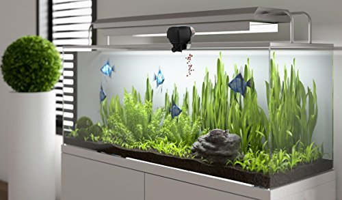 Digital Automatic Fish Feeder PROCHE Aquarium Fish Feeder Fish Tank Pond Auto Food Timer Feeder Adjustable Dispenser Batteries Included for Vacation, Weekend