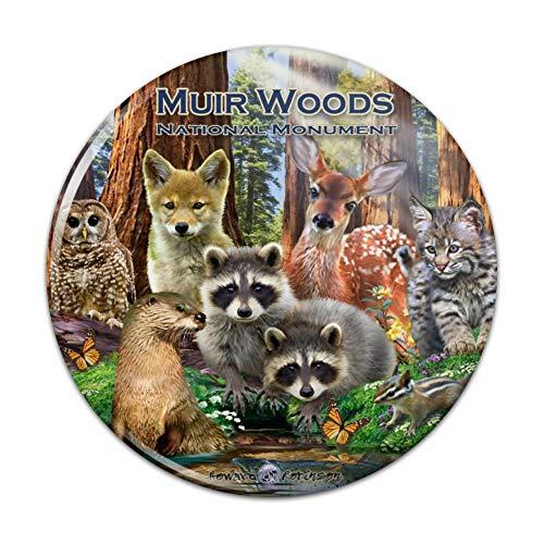 (Muir Woods National Monument California CA Redwoods Forest Animals Kitchen Refrigerator Locker Button Magnet - 1