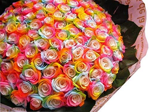 プロポーズ バラ 100本 花束 レインボーローズ  プリザーブドフラワー プロポーズ記念日のフラワーギフト おすすめ B074N5D56N
