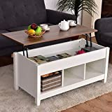 Low Coffee Table with Hidden Lift Top and Lower Storage Compartment for Contemporary Home and Living Room (White) For Sale