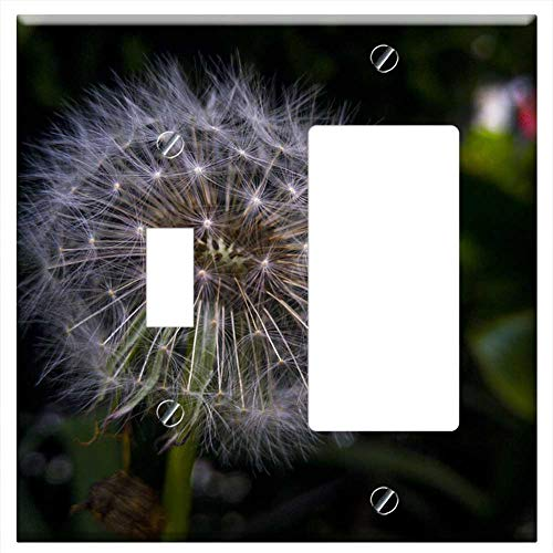 (1-Toggle 1-Rocker/GFCI Combination Wall Plate Cover - Dandelion Foreground Plant Nature Flower Tara)