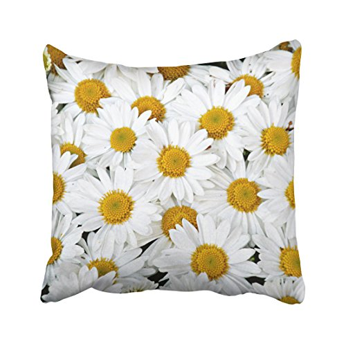 Musesh daisies Cushions Case Throw Pillow Cover For Sofa Home Bedding Decorative Pillowslip Gift Ideas Household Pillowcase Zippered Pillow Covers 16X16Inch