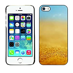 LASTONE PHONE CASE / Carcasa Funda Prima Delgada SLIM Casa Carcasa Funda Case Bandera Cover Armor Shell para Apple Iphone 5 / 5S / Cool Yellow Sun Summer Sky Blue