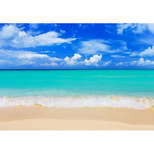 wall26 - Word Paradise on Beach - Concept Travel Background - Removable Wall Mural | Self-Adhesive Large Wallpaper - 100x144 inches by wall26 (Image #1)