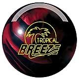 Storm Tropical Breeze Hybrid Black/Cherry