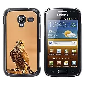 Be Good Phone Accessory // Dura Cáscara cubierta Protectora Caso Carcasa Funda de Protección para Samsung Galaxy Ace 2 I8160 Ace II X S7560M // hawk bird brown feathers wings hunting