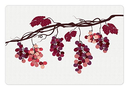 Fruit Pet Mats for Food and Water by Ambesonne, Vine Branch with Colorful Grapes Agriculture Themed Illustration Healthy Food Options, Rectangle Non-Slip Rubber Mat for Dogs and Cats, - Illustration Grape Vine