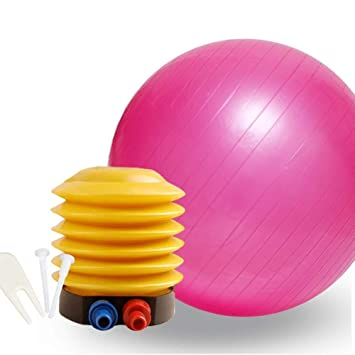 Ssery Fitness Pelota de Ejercicio 75CM Balón de Ejercicio ...
