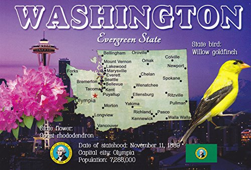 STATES0WAS - WASHINGTON Evergreen State, State bird: Willow Finch, State Flower: Coast Rhododendron - A U.S. State POSTCARD .. from Hibiscus ()