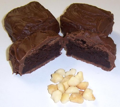 Scott's Cakes Milk Chocolate Covered Brownie Bites with Macadamia Nuts in a 1 Pound Clear Cello Bag