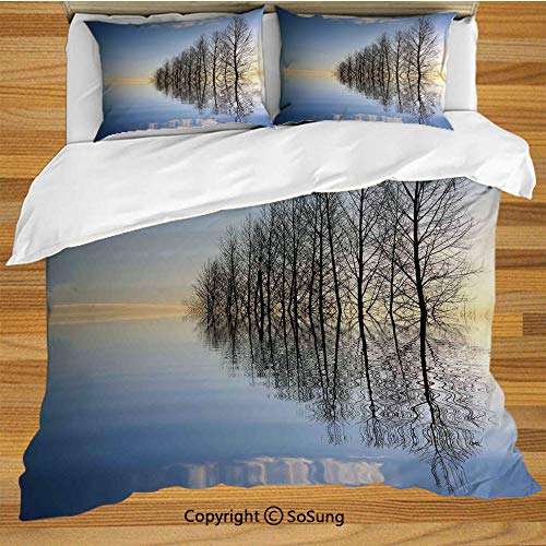 - Lake House Decor King Size Bedding Duvet Cover Set,Trees on Top of The Frozen Lake in The Winter Scenic Forces of Nature Art Print Decorative 3 Piece Bedding Set with 2 Pillow Shams,Blue Brown