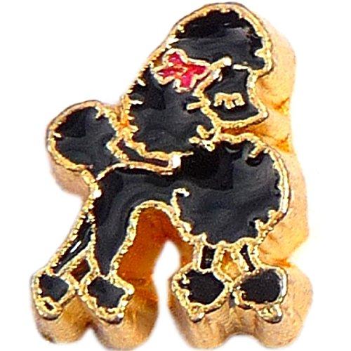 Black Poodle Floating Locket (Black Poodle Charm)