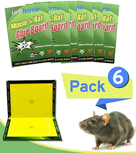 Urbhome Extra Sticky Rodent Glue Trap with Large Capture Area |100% Toxin Free Mouse and Rat Glue Boards | Kid & Pet Safe | Easy to Use | Best Eco-Friendly Traps for Mice, Rats, and Other Pests. 6PACK