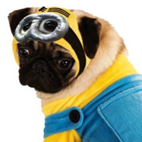 Despicable Me Minion Pet Costume, Medium - http://coolthings.us