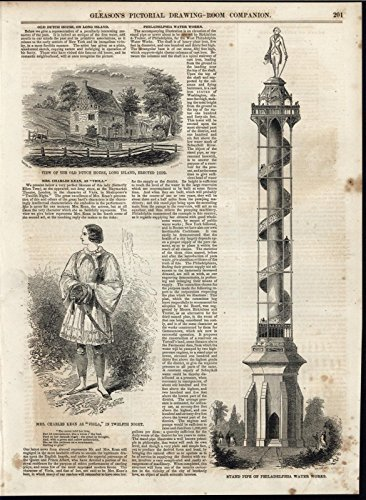 Colonial Pipe (Stand Pipe Philadelphia Water Colonial Dutch Home 1853 antique engraved print)