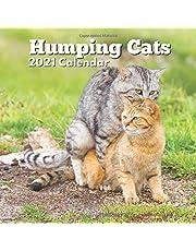 Funny Cat Lover Gift: Humping Cats 2021 Calendar for Women Men