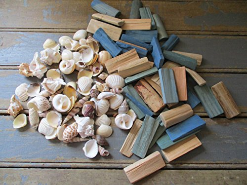 From The Attic Crafts Sea Shells and Wood Bowl Filler Set Beach Decor in Auqa, Seagrass Green and Natural by From The Attic Crafts (Image #1)