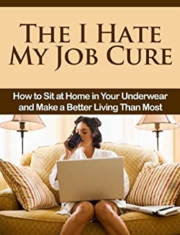 Amazon.com: The I Hate My Job Cure: How to Sit at Home in