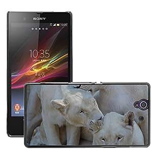 Just Phone Cover Etui Housse Coque de Protection Cover Rigide pour // M00139790 León de África blanca Animal Safari // Sony Xperia Z L36H C6603