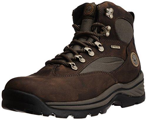 Timberland Mens 15130 Chocurua Trail GTX BootBrownGreen10.5 M