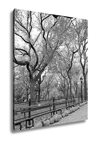 Ashley Canvas Central Park, Kitchen Bedroom Living Room Art, Black/White 30x24, -