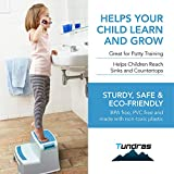 Two Step Kids Step Stools - 2 Pack, Blue