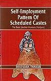 Self-Employment Pattern of Scheduled Castes 9788171003556