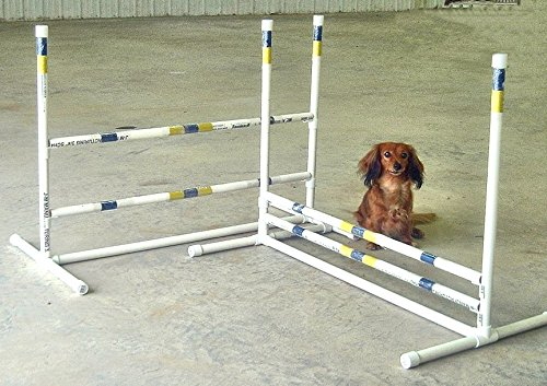 Agility by Carlson 2 Single Jumps for Small Dogs by Agility by Carlson