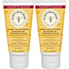 Burt's Bees Baby Bee 100% Natural Diaper Rash Ointment, 6 Ounces Total