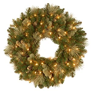 National Tree 24 Inch Carolina Pine Wreath with Flocked Cones and 50 Clear Lights (CAP3-306-24W-1) 60