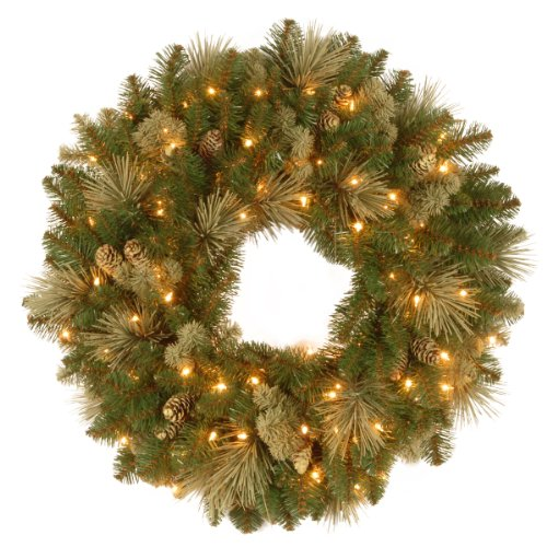 National Tree 24 Inch Carolina Pine Wreath with Flocked Cones and 50 Clear Lights (CAP3-306-24W-1) by National Tree Company