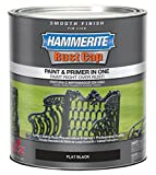 Masterchem Industries 44235 Smooth Flat Paint, Black