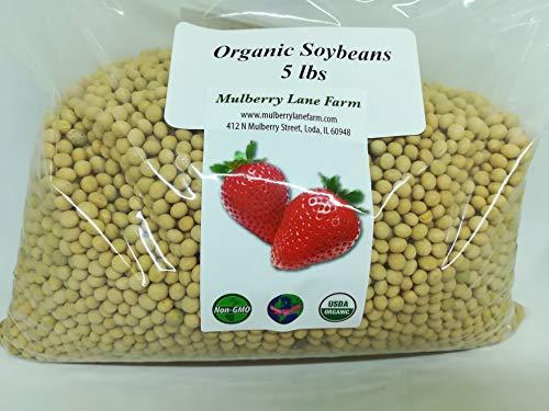 Soybeans, 5 Pounds Whole, USDA Certified Organic, Non-GMO Bulk