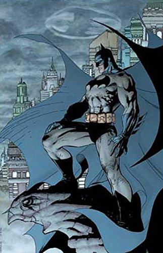 Lee Art Batman Jim (Batman: