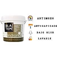 INDIANA ANTIMOHO PROFESIONAL PLASTICA VINILICA MATE (4 LTS)