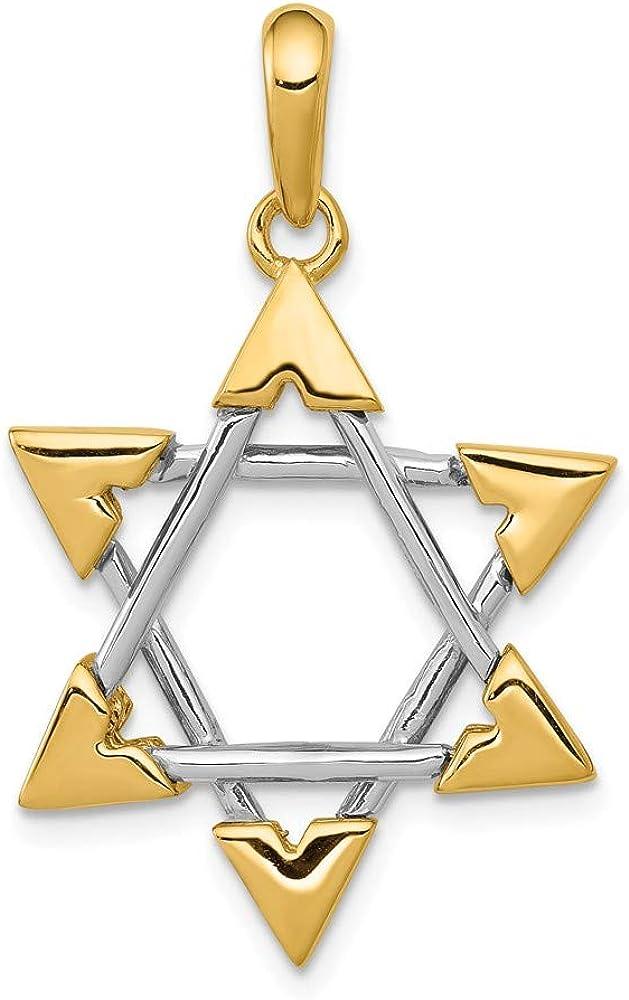 FB Jewels Solid 14K Yellow Gold Star Of David Pendant