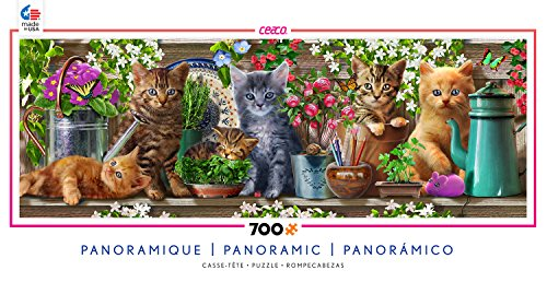 Ceaco Long Shots Panoramic - Kittens Puzzle (700 Piece) (Piece Panoramic 700 Puzzle)