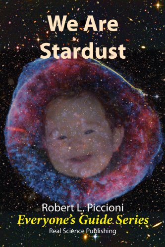 We are Stardust (Everyones Guide Series Book 6)