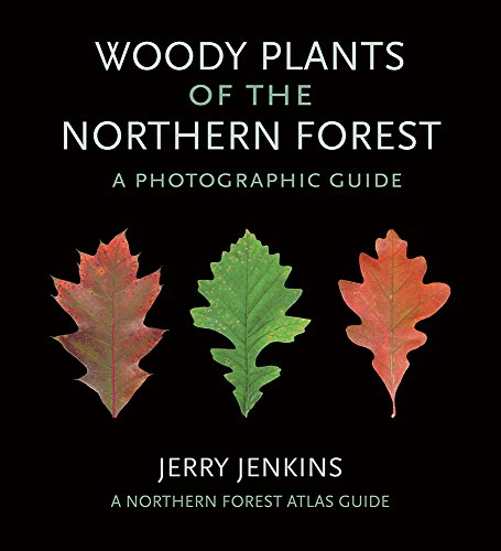 Woody Plants of the Northern Forest: A Photographic Guide (The Northern Forest Atlas Guides)