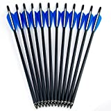 "M.A.K 20"" Crossbow Bolts Carbon Arrow Hunting Archery with 4"" vanes Feather and Replaced Tips (12 Pack)"