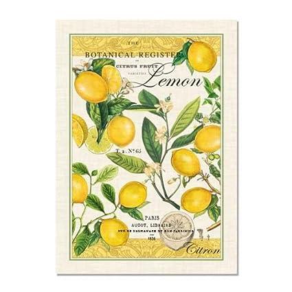 Attrayant Michel Design Works Lemon Kitchen Towel, Natural Woven Cotton