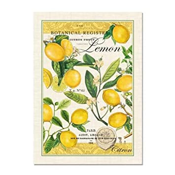 Michel Design Works Lemon Kitchen Towel, Natural Woven Cotton