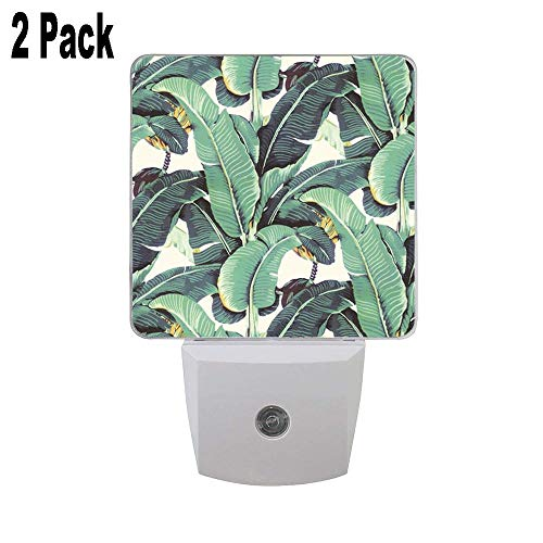 Banana Leaves Pattern Blanche Devereaux Style 2PCs Led Night Lights, Auto Sensor Dusk to Dawn Plug in Night Lights for Nursery Bathroom Bedroom Hallways Kitchen Stairs for Kids Baby Girls Boys Adults (Best Of Blanche Devereaux)