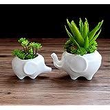 Ceramic Elephant Succulent Flower Pot / Planter Mother Child Elephants