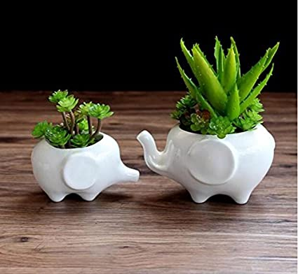 Amazon Com Ceramic Elephant Succulent Flower Pot Planter Mother