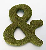 "Lillian Rose MG600 12"" Moss Ampersand Monogram Letter"