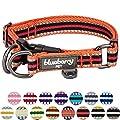 Blueberry Pet 15 Colors 3m Reflective Multi Colored Stripe Adjustable Dog Collar Orange And Black Large Neck 18 26