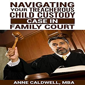 Navigating Your Treacherous Child Custody Case in Family Court Audiobook