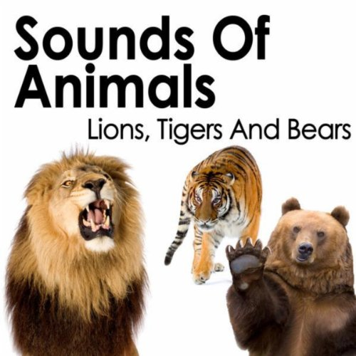 Wild Animals: Sound Effects by Sound Effects on Amazon Music