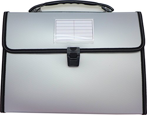 Cypress Lane Expanding File Folders with Handle, 13 Pockets, Letter Size (Silver Gray)